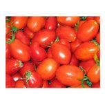 Tomates de ciruelo postal