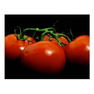 Tomates de la vid tarjetas postales