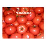 Tomates de Tennessee Tarjetas Postales