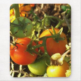 Tomates deliciosos alfombrilla de ratón