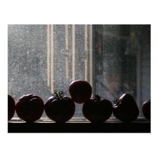 Tomates en la ventana tarjetas postales