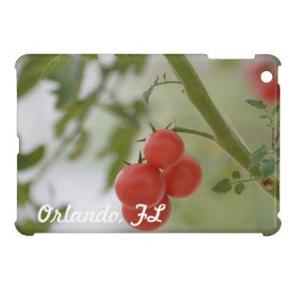Tomates frescos de la Florida iPad Mini Protectores