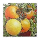 Tomates frescos de la herencia del jardín azulejo