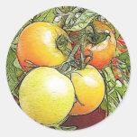 Tomates frescos de la herencia del jardín etiquetas