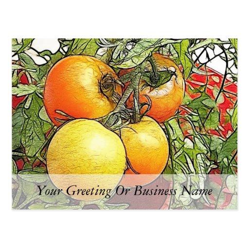 Tomates frescos de la herencia del jardín postales