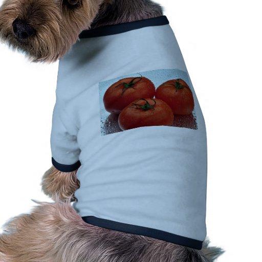 Tomates frescos deliciosos del jardín camiseta con mangas para perro