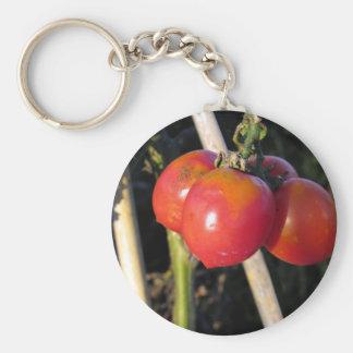 Tomates maduros en una rama llavero redondo tipo pin