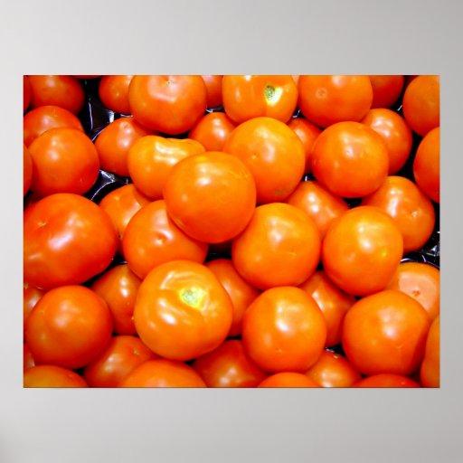 Tomates maduros regordetes posters