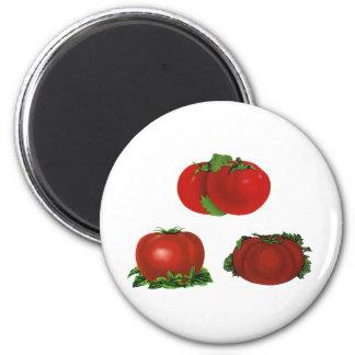 Tomates maduros rojos comida, frutas, verduras del imán redondo 5 cm