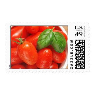 Tomates maduros rojos con franqueo de la albahaca