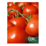 Tomates Postal