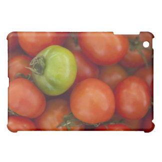 tomates rojos con un verde uno para la venta en