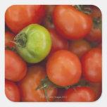 tomates rojos con un verde uno para la venta en pegatina cuadrada