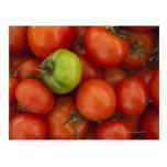 tomates rojos con un verde uno para la venta en postal