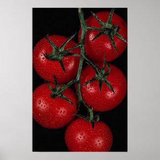 Tomates rojos frescos y jugosos póster