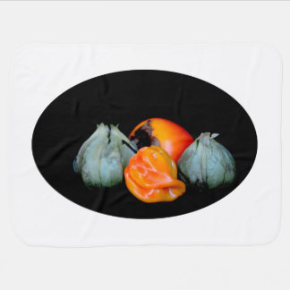tomatillo pepper persimmon fruit vegetable image receiving blankets