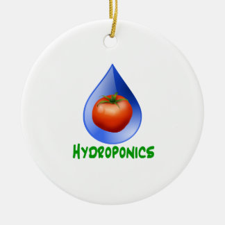Tomato blue drop green text hydroponics Double-Sided ceramic round christmas ornament