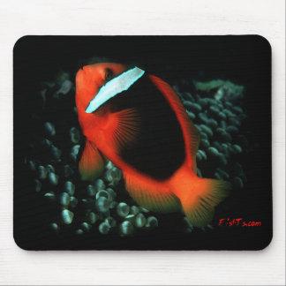 Tomato ClownFish Mouse Pad
