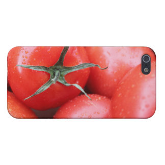 tomato cover for iPhone SE/5/5s