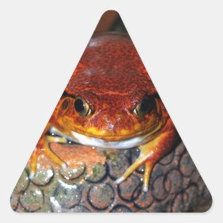 Tomato frog triangle sticker
