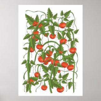 Tomato Pattern Poster