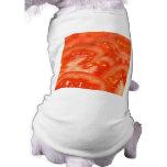 Tomato Pet Clothes