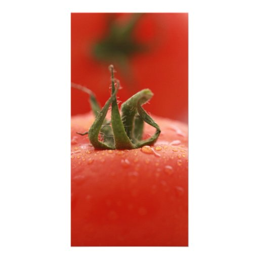 Tomato Photocard Photo Greeting Card