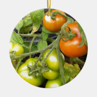 Tomato Plant Ceramic Ornament