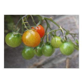Tomato Plant Invitation