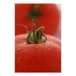Tomato Print
