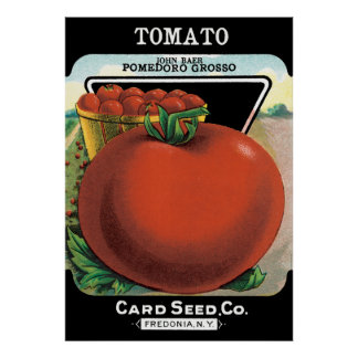 Tomato Seed Packet Print