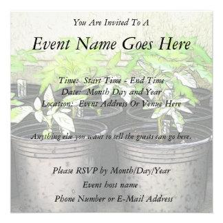 Tomato Seedlings In Nursery Pots Personalized Invite