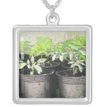 Tomato Seedlings In Nursery Pots Personalized Necklace