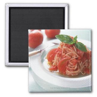 Tomato Spaghetti Magnet