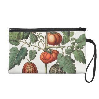 Tomatoes and Melons: 1.Poma amoris fructu luteo; 2 Wristlet Purse