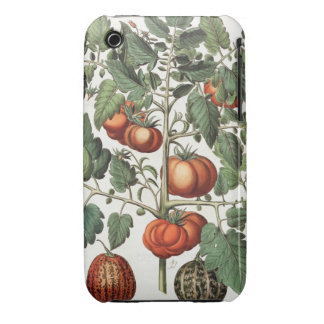 Tomatoes and Melons: 1.Poma amoris fructu luteo; 2 iPhone 3 Case-Mate Case