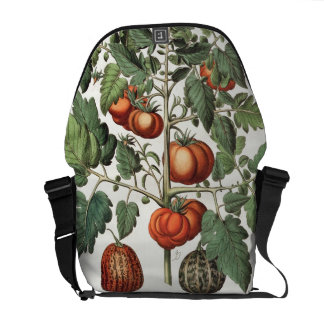 Tomatoes and Melons: 1.Poma amoris fructu luteo; 2 Messenger Bag