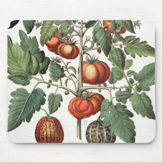 Tomatoes and Melons: 1.Poma amoris fructu luteo; 2 Mouse Pad