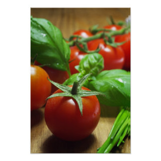 Tomatoes herb picture poster