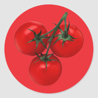 Tomatoes on a Vine Classic Round Sticker