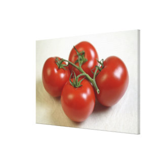 Tomatoes on the vine For use in USA only.) Canvas Print