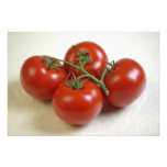 Tomatoes on the vine For use in USA only.) Photo Print