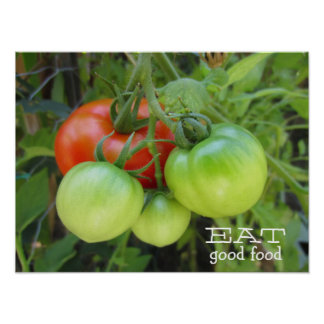 Tomatoes Organic Eat Good Food Red and Green Poster