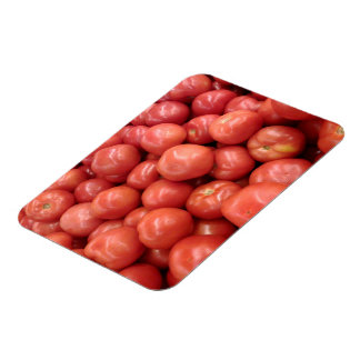 Tomatoes Magnet