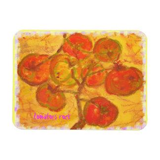 tomatoes rock rectangular photo magnet