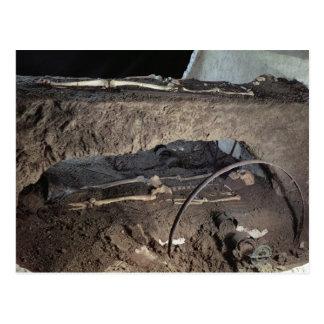 Tomb of a Gaulish chief Postcard