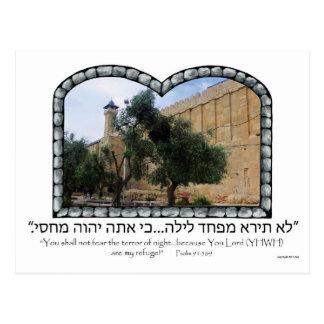 Tomb of the Patriarchs Postcard