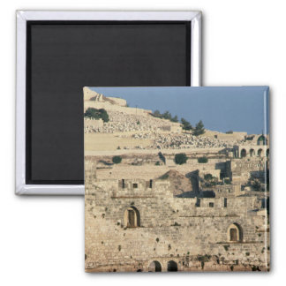 Tombs on the side of the Mount of Olives Magnet
