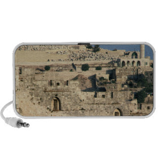 Tombs on the side of the Mount of Olives Mini Speakers