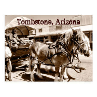 Tombstone Arizona Horses Covered Wagon Postcard